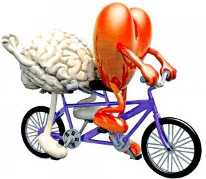 Ilustračná fotka -cyklistika je významná pre srdce